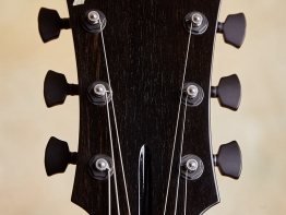 marchione-archtop-16-11