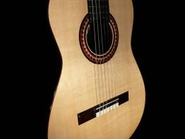 flamenco-4.jpg