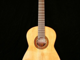 flamenco-32.jpg