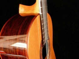 flamenco-34.jpg