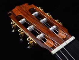 flamenco12.JPG