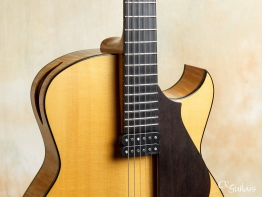 Marchione-15-Archtop-2