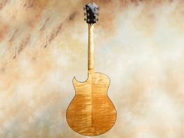 marchione-15-archtop-13