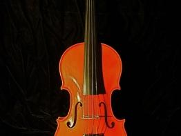 violin10.jpg