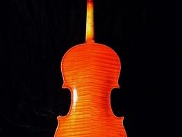 violin11.jpg