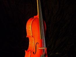 violin12.jpg