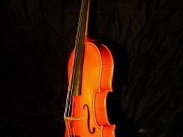 violin13.jpg