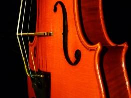 violin14.jpg