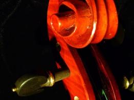 violin16.jpg