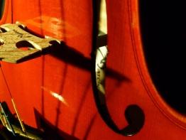 violin17.jpg