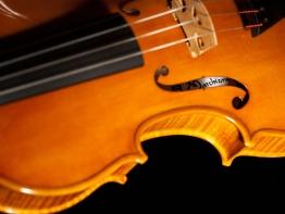 violin5.jpg