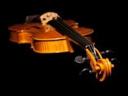 violin6.jpg