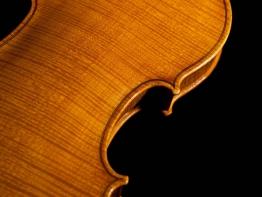 violin9.jpg